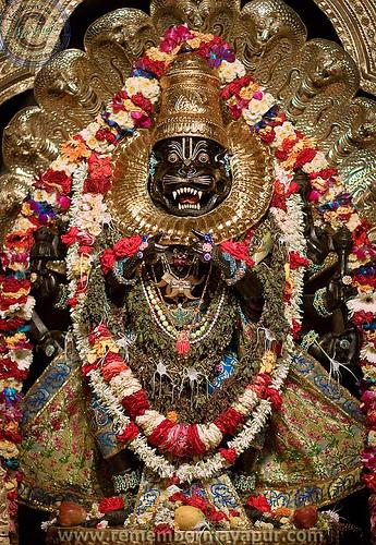 narasimha-16-mayapur