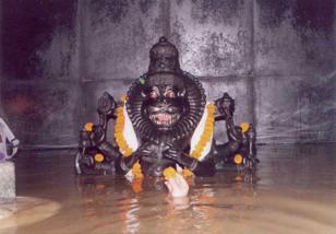 narasimha-5-mayapur-flood