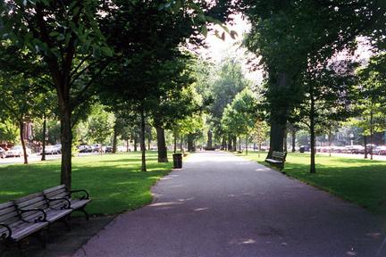 Boston Commonwealth Ave