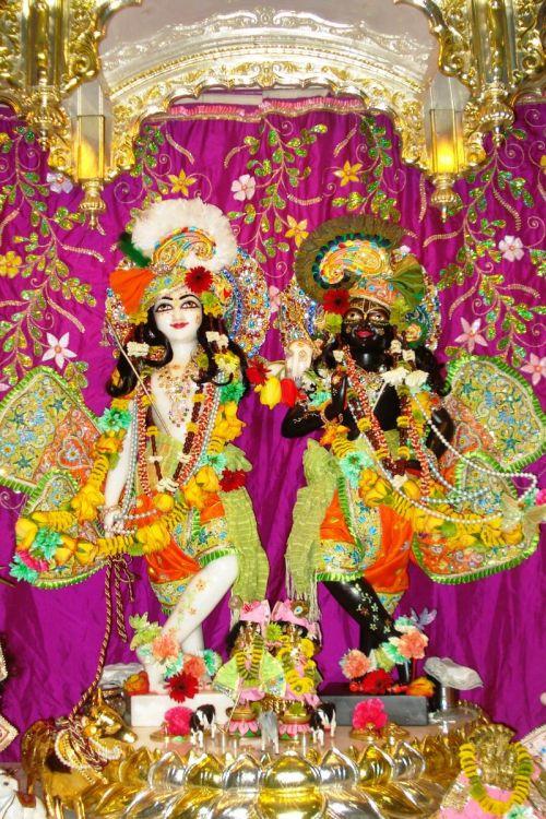 Krishna-Balarama on altar